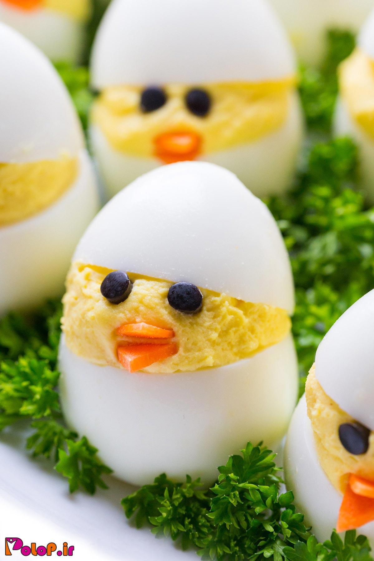 تخم مرغ وضع حمل کرد !
