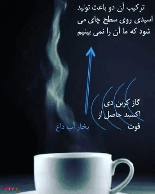 هرگز چای را فوت نکنید