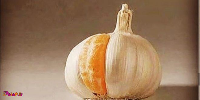 وقتی سیری و بازم واسه نارنگی جا داری