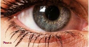 یک زن بریتانیایی در چشم خود4نوع عصب تشخیص رنگ دارد.
