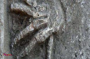 باستان شناسان یک کشف حیرت انگیز داشته اند.