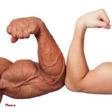 6⃣ حرکت برای تمرین عضلات_جلوبازو