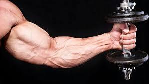 🔰چرا رشد عضلات متوقف شده است🔰