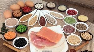 ❇️ دلایل نیاز بدن انسان به پروتئین: