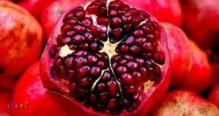 کسانیکه سرد مزاج هستند نباید در خوردن انار افراط کنند .