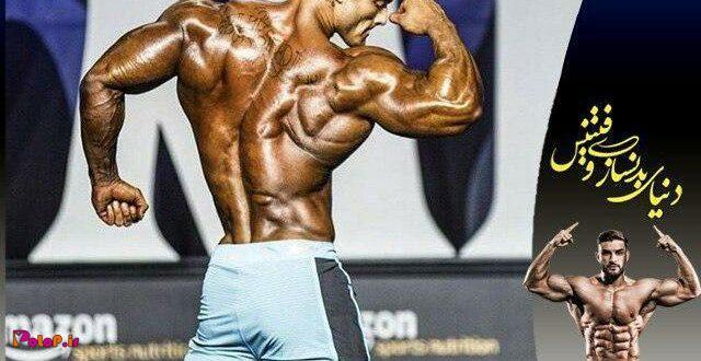 برنامه تفکیک عضلات پشت