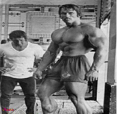 برنامه سینه و ساق پا آرنولد