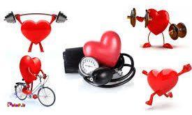 👈آمادگی جسمانی قلبی عروقی و هوازی چیست؟