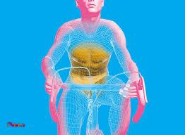 برای سلامتی بدن و چربی سوزی دوچرخه سواری کنید