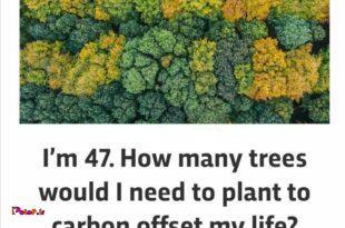 یک انسان 47 ساله در سال 13 میلیون تن ترکیباتی کربنی مثل دی اکسید کربن و یکسری گازهای گلخانهای دیگه تولید و به طبیعت منتقل میکنه!