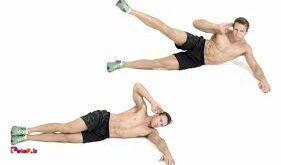 عضلات کر یا مرکزی کدامند؟