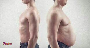 برای کاهش وزن تنها به تمرینات قلبی عروقی نیاز دارید