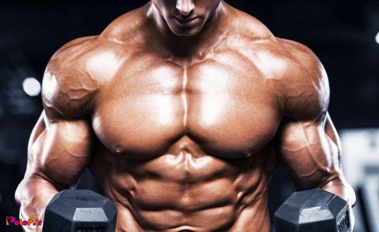 بهترین حرکات برای هر عضله
