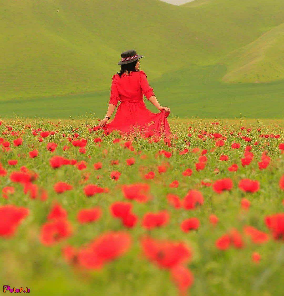 خالدنبی، کلاله، استان گلستان