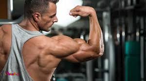 بهترین تمرینات برای رشد و تقویت پشت بازو
