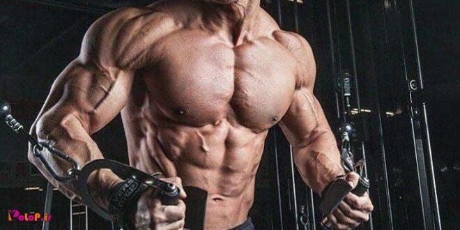 در تمرین بایدعضلات خود را کاملا حس کنید طوری که انبساط و انقباض به طورکامل انجام شود