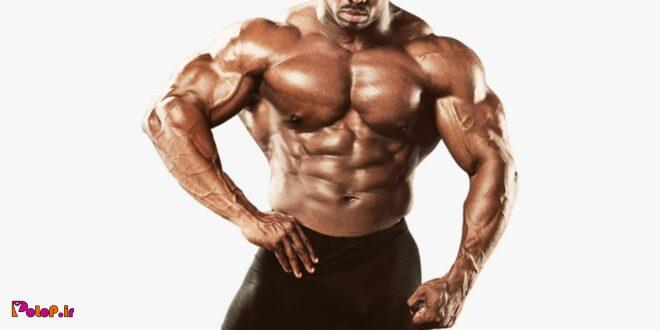 برای ساخت عضله خشک باید وعدهای غذای منظم با پروتئین بالا داشته باشید