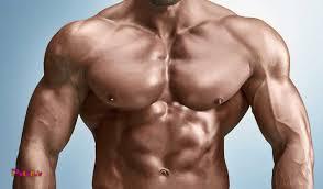 برنامه حجمی عضلات سینه