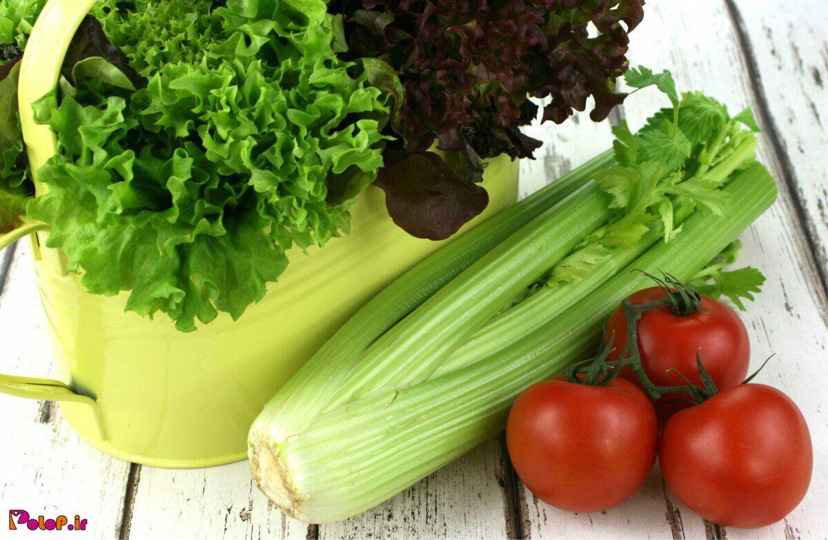 غذاهای مفید برای لاغری شکم