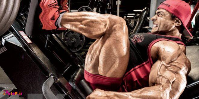 برنامه حجمی عضلات پا