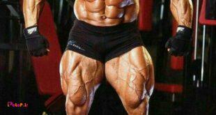 برنامه حجمی عضلات زیر بغل
