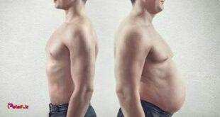 برای کاهش وزن تنها به تمرینات قلبی-عروقی نیاز دارید
