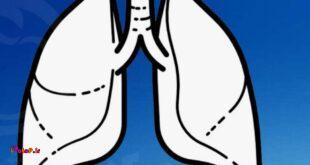 تقویت ریه ها