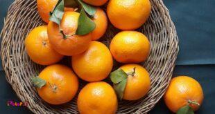 نارنگی بخاطر داشتن فسفر زیاد، باعث تقویت هوش کودک میشود.