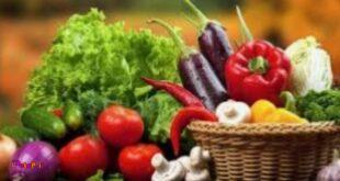 """سیستم ایمنی بدن خود را با مصرف """"سبزیجات"""" نفوذ ناپذیر کنید، سوء تغذیه عامل اصلی ابتلا به کرونا"""