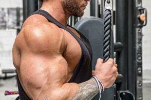 به سادگی عضله سازی کنید