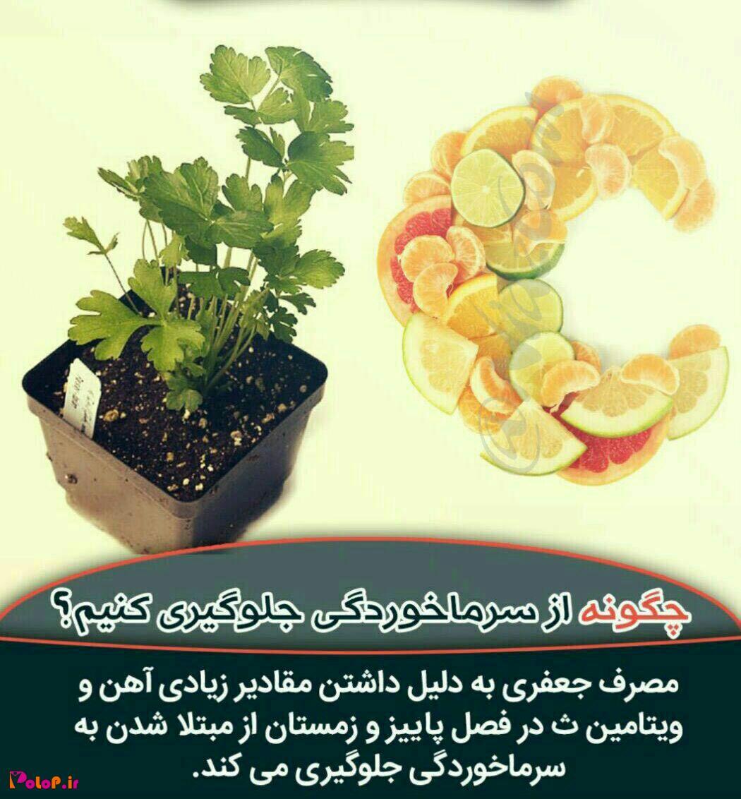 برای پیشگیری از سرماخوردگی در فصل پاییز و زمستان جعفری مصرف کنید