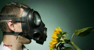 7آنتی هیستامین طبیعی برای کاهش آلرژی ها:
