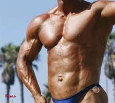 بهترین تمرینات برای حجم عضلات