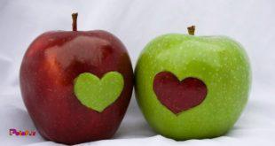 خوردن پوست سیب از بروز یا پیشرفت سرطان پستان، و کبد جلوگیری میكند.