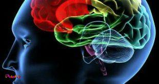 ذهن های بزرگ، راجع به ....