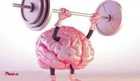 ورزش کردن باعث افزایش حجم مغز و بهبود عملکرد آن میشود.