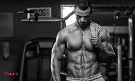 چگونه توده عضلانی رشد میکند