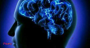 حفظ قدرت مغز با دارچین