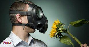 7 آنتی هیستامین طبیعی برای کاهش آلرژی ها👇
